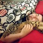Люди, которые пытаются не любить милейших кошек, но у них не получается