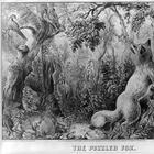 А вы сможете найти всех животных на картинке?
