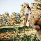 Фото, которые стали шедеврами благодаря котам