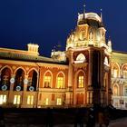 Москва новогодняя 09. Царицыно