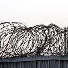 В ООН заявили о повсеместном применении пыток на Украине