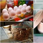 12 советов, как правильно хранить продукты, а не запихивать все в холодильник