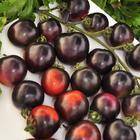 Томаты «Черная гроздь» — экзотические гибриды с необычным вкусом