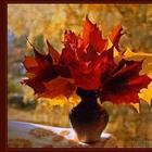 Осенний букет (Стих)