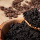 Кофейная гуща, как удобрение: для каких растений?