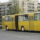 """Венгерская """"гармошка"""": за что мы будем помнить Ikarus 280"""