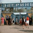 Великолепная подборка редких фотографий СССР времен середины 1960-х