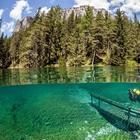 20 удивительных фотографий на стыке двух миров: под водой и над ней