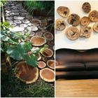 Спилы дерева в оформлении дома и двора