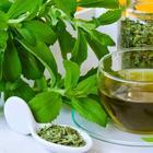 15 полезных добавок к чаю