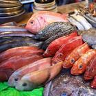 Какую рыбу не приобретет в магазине настоящий повар: основные признаки
