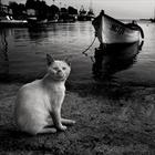 Чёрно-белые снимки с элегичными мотивами. Фотограф Милена Галчина
