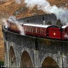Малоизвестные и весьма любопытные факты о железнодорожном транспорте