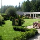 Дача: 100 деревьев, 200 кустарников на 10 сотках