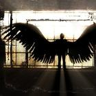 5 способов установить прочную связь с вашим ангелом-хранителем