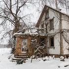 «Сидя в деревне, не сложно зарабатывать $500». Молодая семья купила дом за $5,5 тысячи и строит собственное поселение
