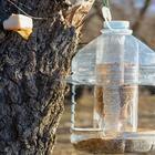 Кормушка для птиц своими руками из подручных материалов: оригинальные и простые идеи