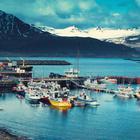 14 вещей, которые делают Исландию даже круче Средиземья