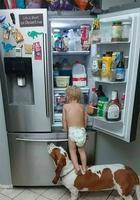25 собак, которые просто обожают детей