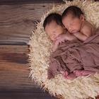 9 интересных фактов о близнецах
