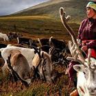 ТОП-10: Удивительные факты про Монголию