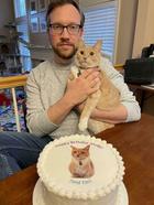 20 избалованных котиков, владельцы которых расшибутся, но предоставят им лучшую жизнь