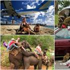 «Ах, лето!»: 17 провальных отпускных фотографий, которые заставят посмеяться от души