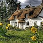 40 фотографий из сказочного графства Девоншир, которые приводят в восторг