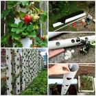 20 лучших идей для сада