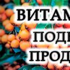 Топ-15 продуктов с высоким содержанием витамина E
