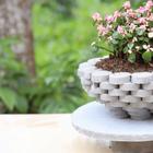Необычное украшение для сада