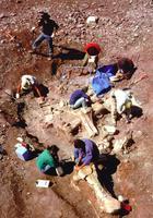 Раса гигантов жила на Земле: находки археологов