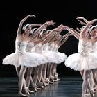 Чем прославился Гонконгский балет, и Почему его называют одной из самых уникальных трупп в мире