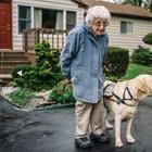 Как пес изменил ее жизнь