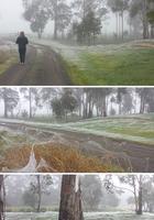 75 причин, почему я никогда не поеду в Австралию - даже на неделю