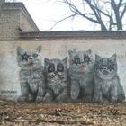 14 потрясающих примеров уличного искусства из разных уголков планеты
