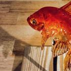 Японский мастер делает реалистичные леденцы — этому рецепту 1200 лет