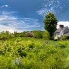 Природный курорт в лесах штата Вермонт