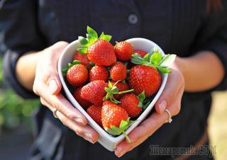 Благодаритє продукты за то, что они вас питают, любят вас.