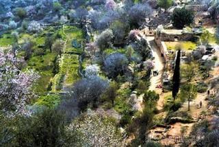 Эйн Саттаф - заповедник в Иудейских горах под Иерусалимом