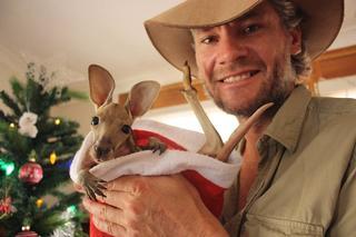 Спасатель маленьких кенгурят