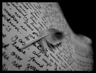 Беспокойная ночь (Стих)