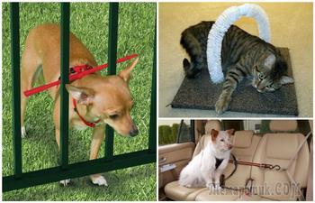 Лайфхаки для владельцев кошек и собак, которые облегчат уход за питомцами