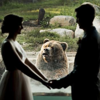 Свадебные неожиданности, к которым не готовились, но они все равно случились