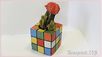 Креативный цветочный горшок для любителей головоломок