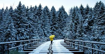 Умиротворяющие зимние пейзажи немецкого фотографа