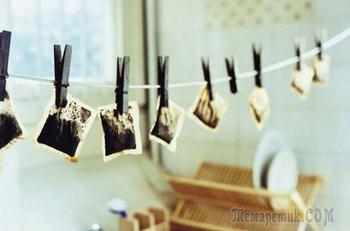 Хранить нельзя выкидывать: 11 способов повторного применения чайного пакетика