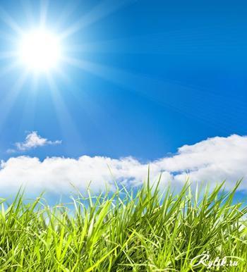 Почему трава зелёная, а небо голубое? Непростые ответы на детские вопросы