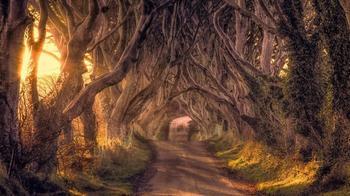 13 сказочных мест, которые существуют в реальности