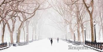 Ночной снегопад (Стих)